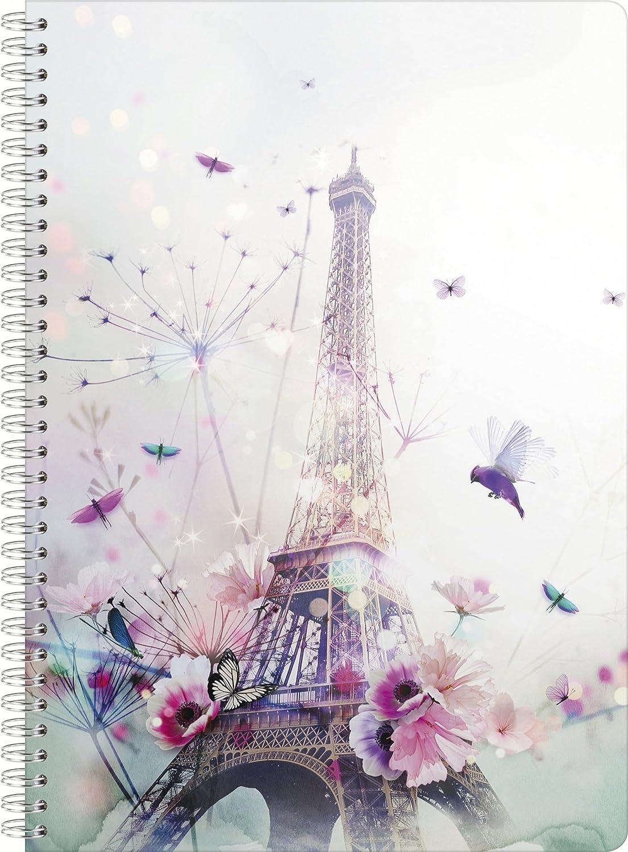 Clairefontaine Chacha 83217/C Quaderno a spirale A4/100/pagine in 5/x 5 rivestimento satinato//Rilegatura Argento 2/disegni assortiti Paris modello casuale