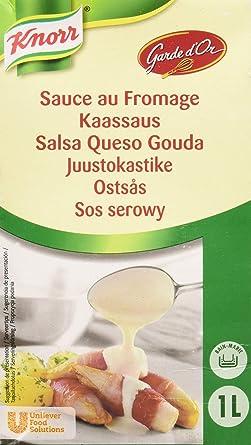 Knorr Garde DOr Salsa Queso Gouda líquida lista para usar brik 1L ...
