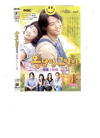 Amazon com: Attic Cat Aka Rooftop Room Cat - Korean Drama