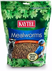 Kaytee Mealworms, 17.6 oz