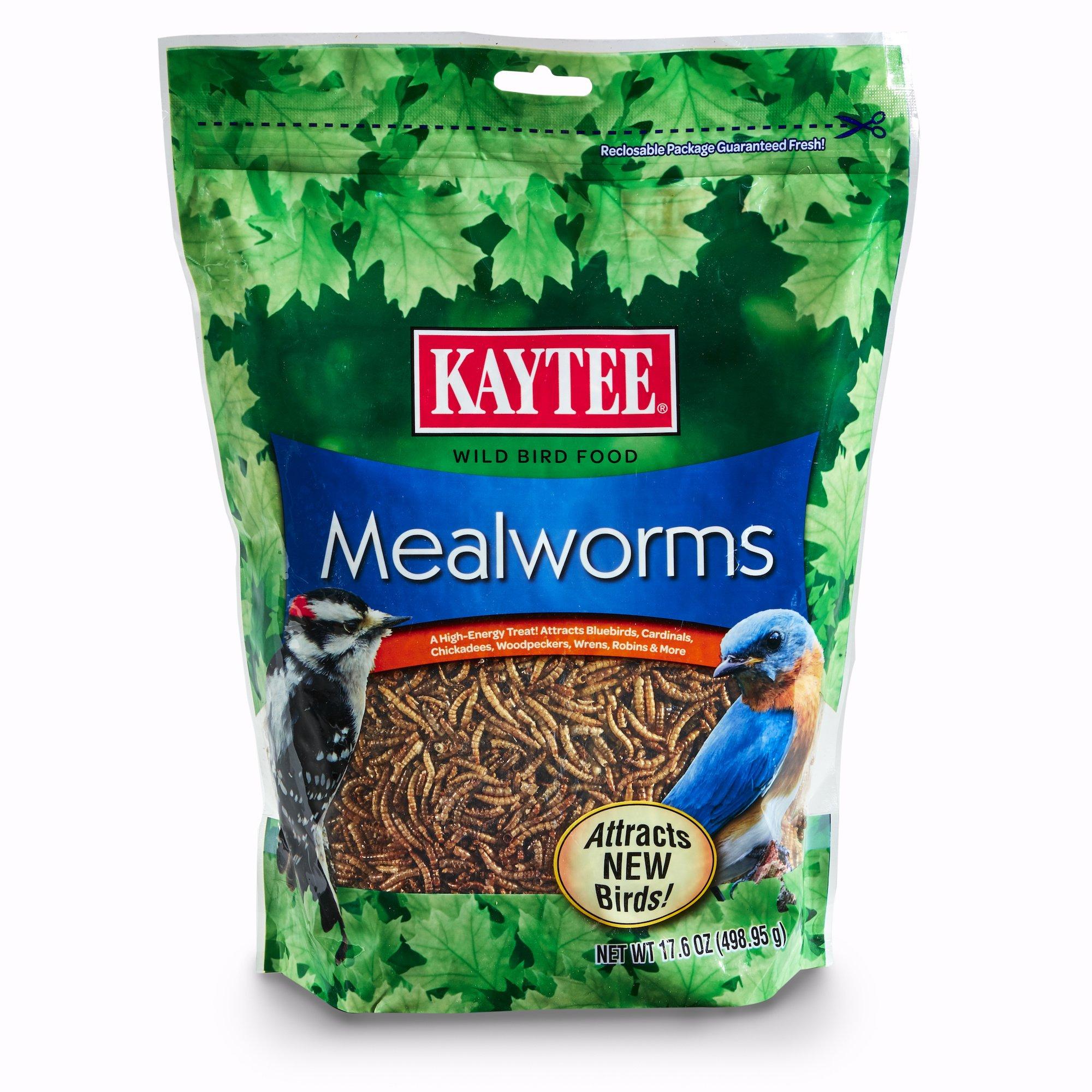 Kaytee 100505655 Mealworms, 17.6 oz, 17.6 Ounce by Kaytee