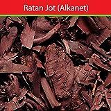 Neeraj Traders Ratanjot Root - 100 Gm