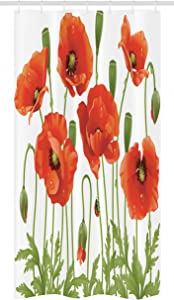 Ambesonne Flower Stall Shower Curtain, Spring Wild Meadow of Poppies Ladybugs and Leaves Season Garden Art Nature Backyard Concept Print, Fabric Bathroom Decor Set with Hooks, 36