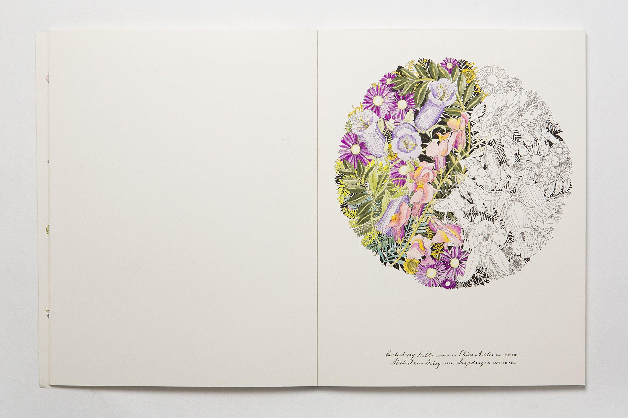 Floribunda A Flower Coloring Book Leila Duly 9781780677682 Books