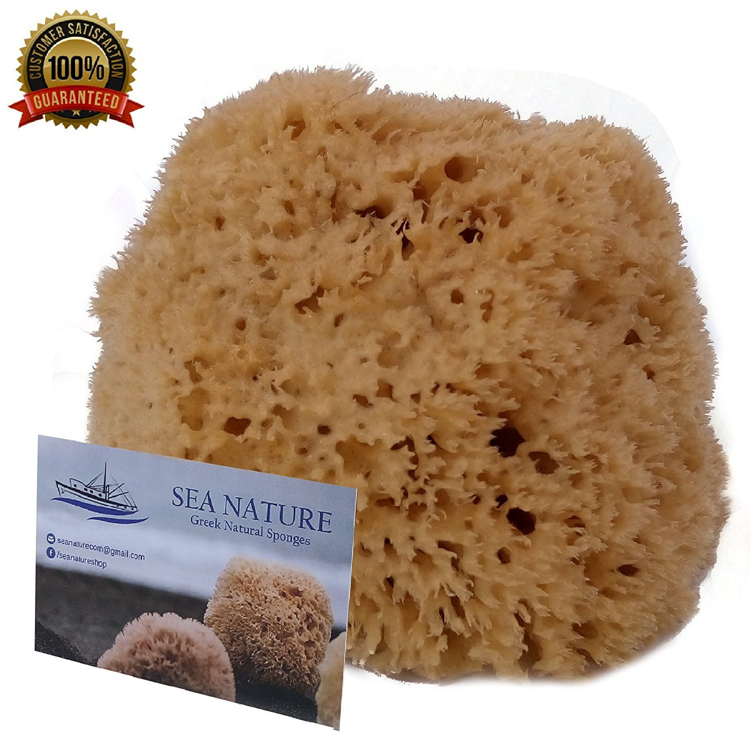 Natural Sea Sponge SEA NATURE BRAND 5-6'' Honeycomb Type for Body Bath and Face Cleaning ideal for Baby Bathing - Strong and Durable Guaranteed
