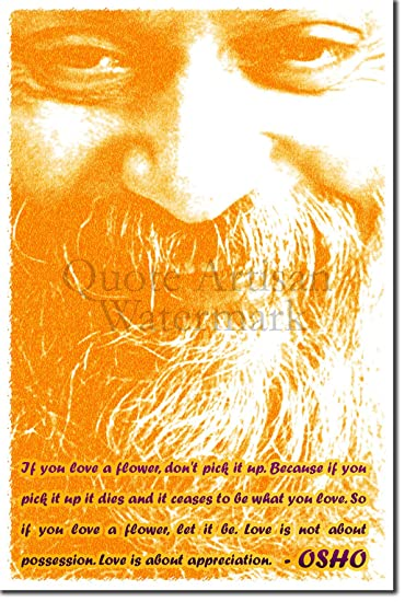 Amazoncom Osho Art Print If You Love A Flower Photo Poster