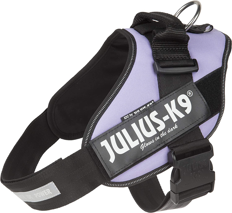 Julius-K9 IDC Powerharness Dog Harness