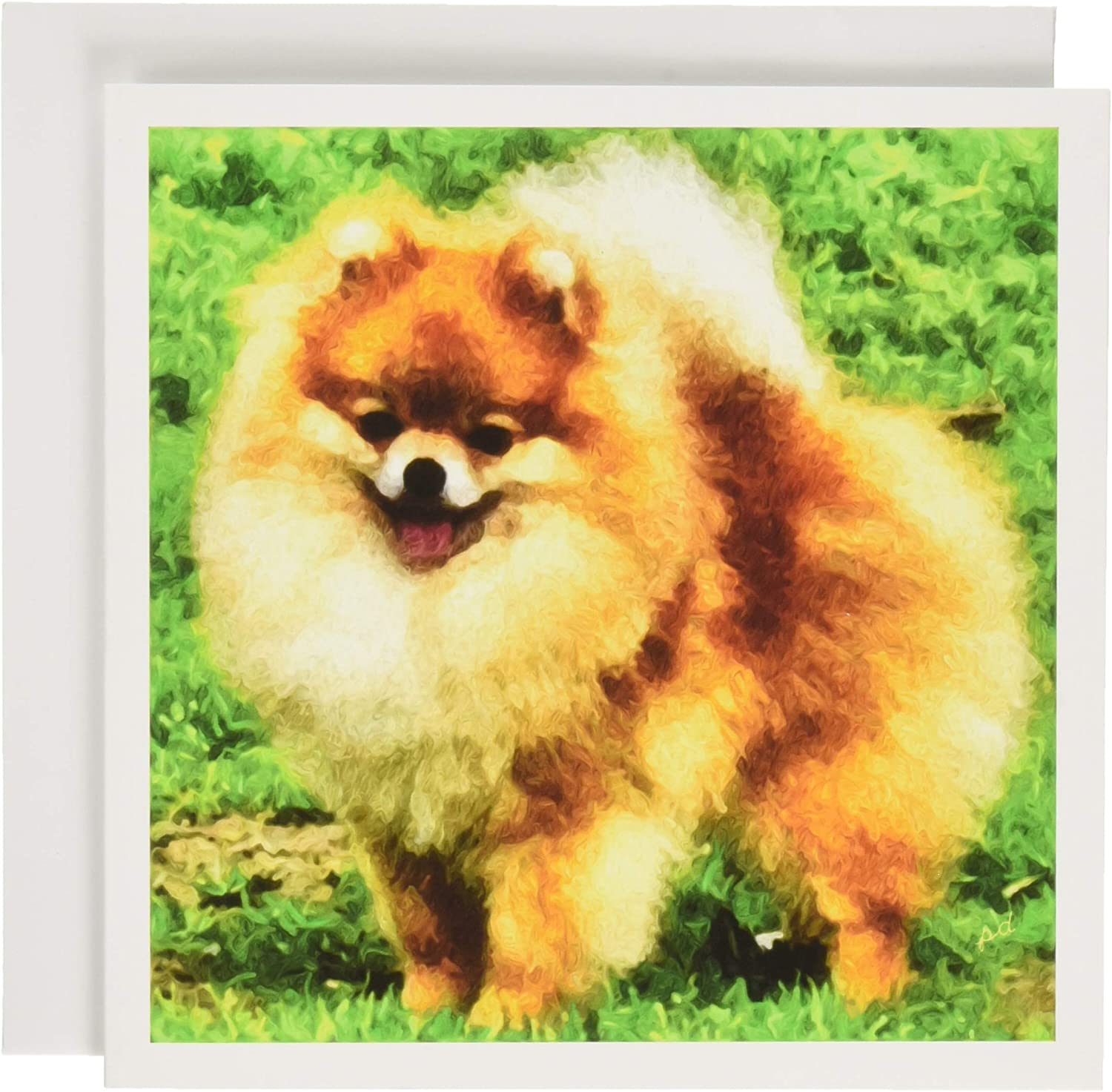 POMERANIAN Set of 10 Note Cards With Envelopes Home Dcor Posters ...