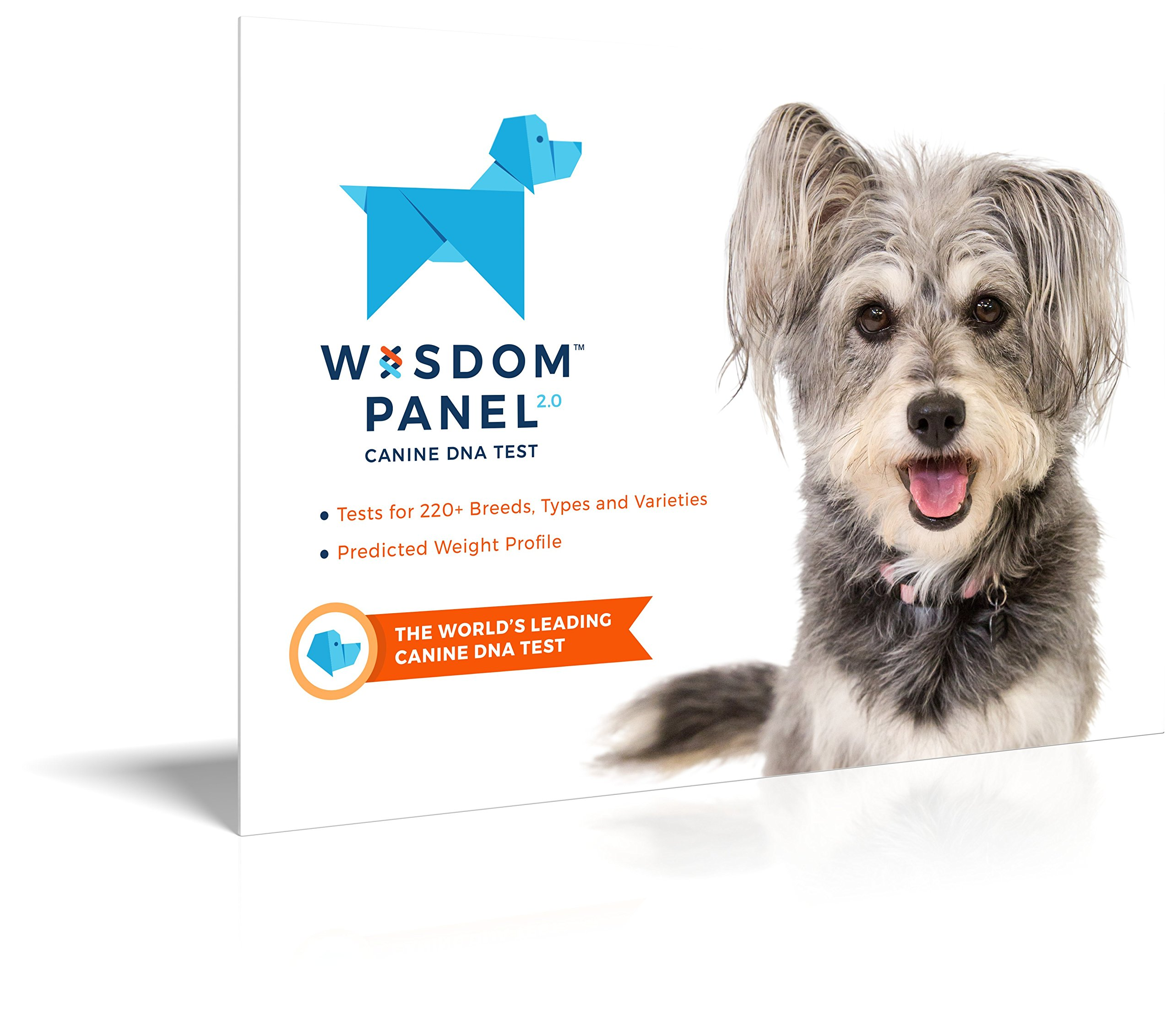 Mixed Breed Dog Dna Test Reviews
