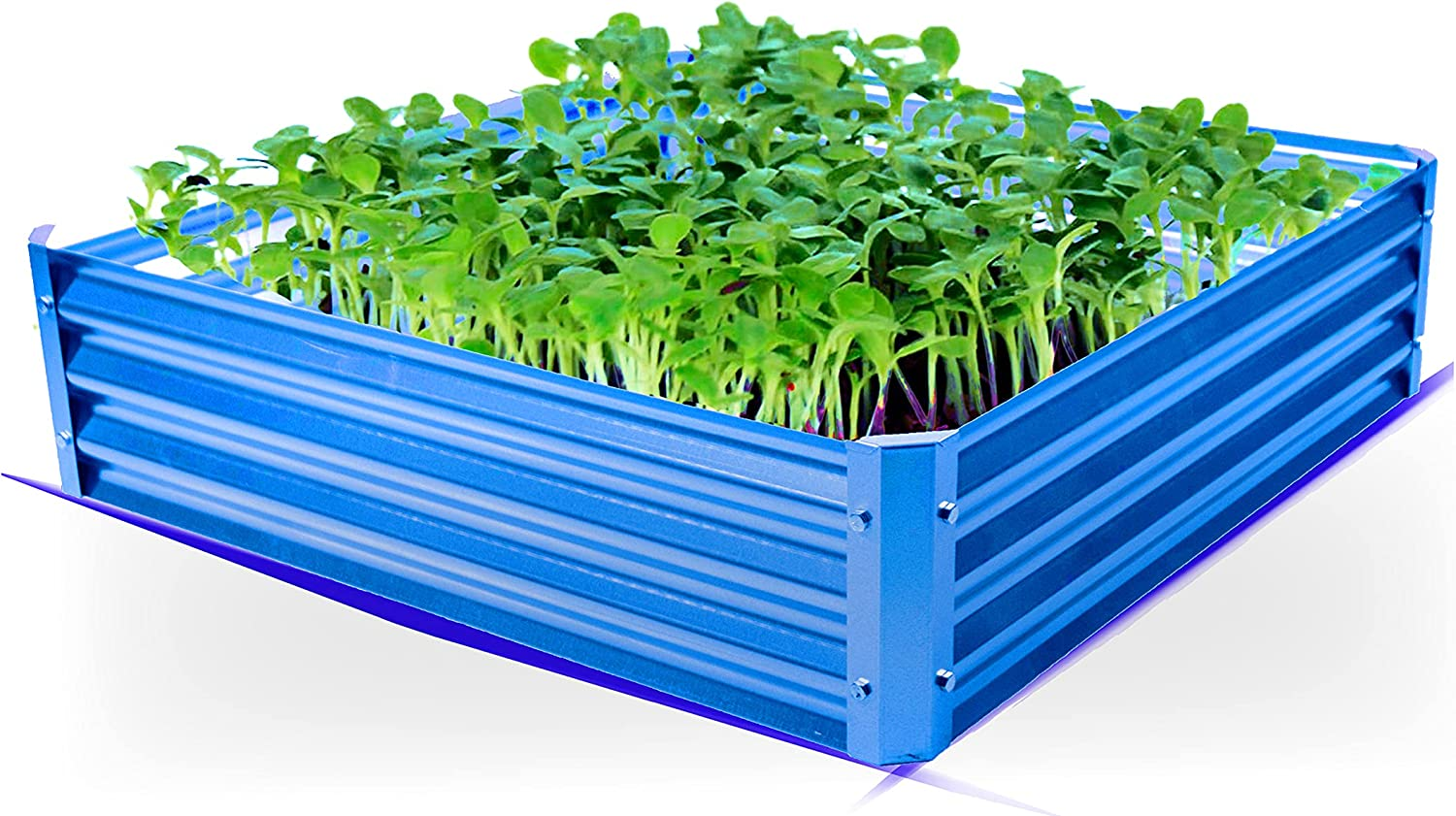BACKYARD EXPRESSIONS PATIO · HOME · GARDEN 908073 Raised Garden Bed, Turquoise Blue