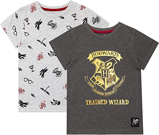 HARRY POTTER Camiseta de Manga Corta Paquete de 2 para niñas Hogwarts: Amazon.es: Ropa y accesorios