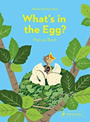 What's in the Egg?