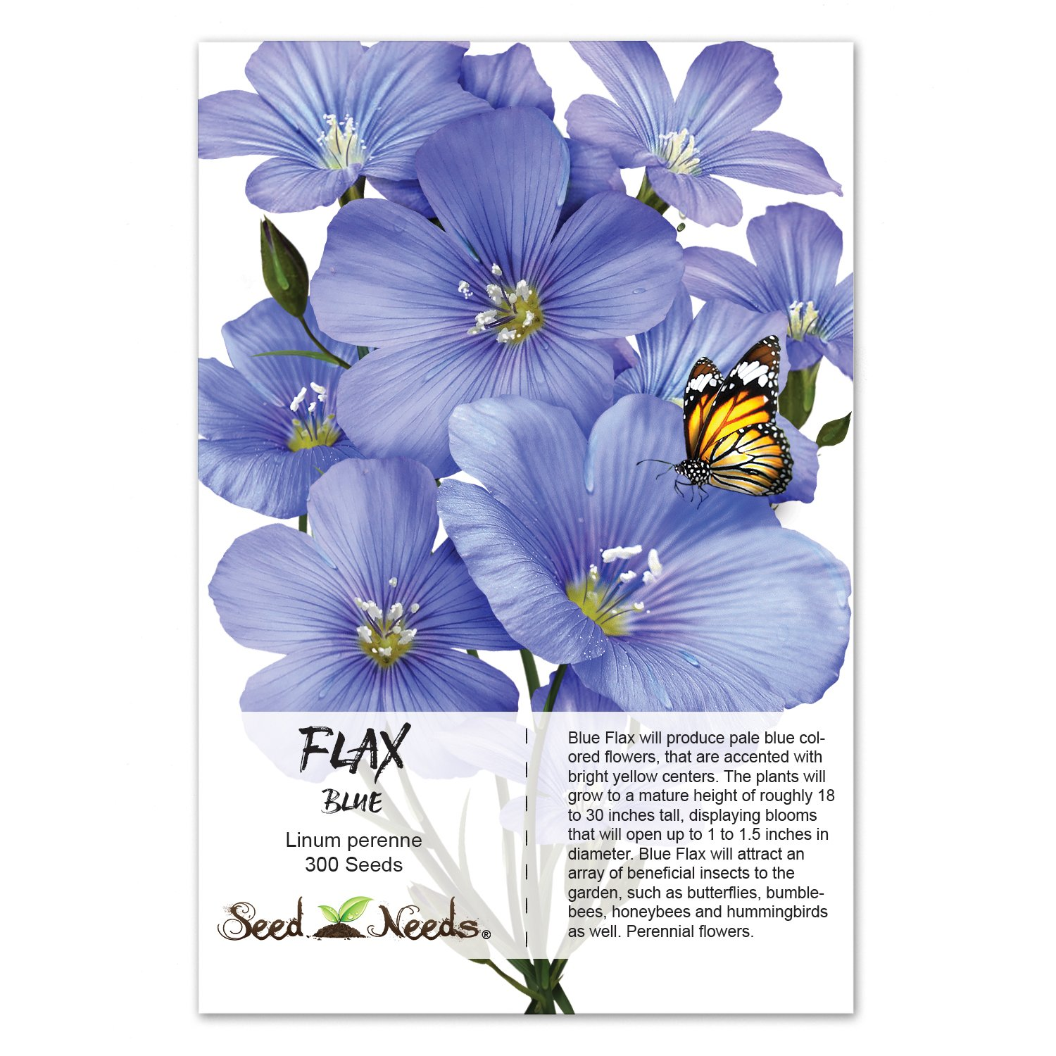 Amazon package of 300 seeds blue flax linum perenne seeds amazon package of 300 seeds blue flax linum perenne seeds by seed needs flowering plants garden outdoor izmirmasajfo