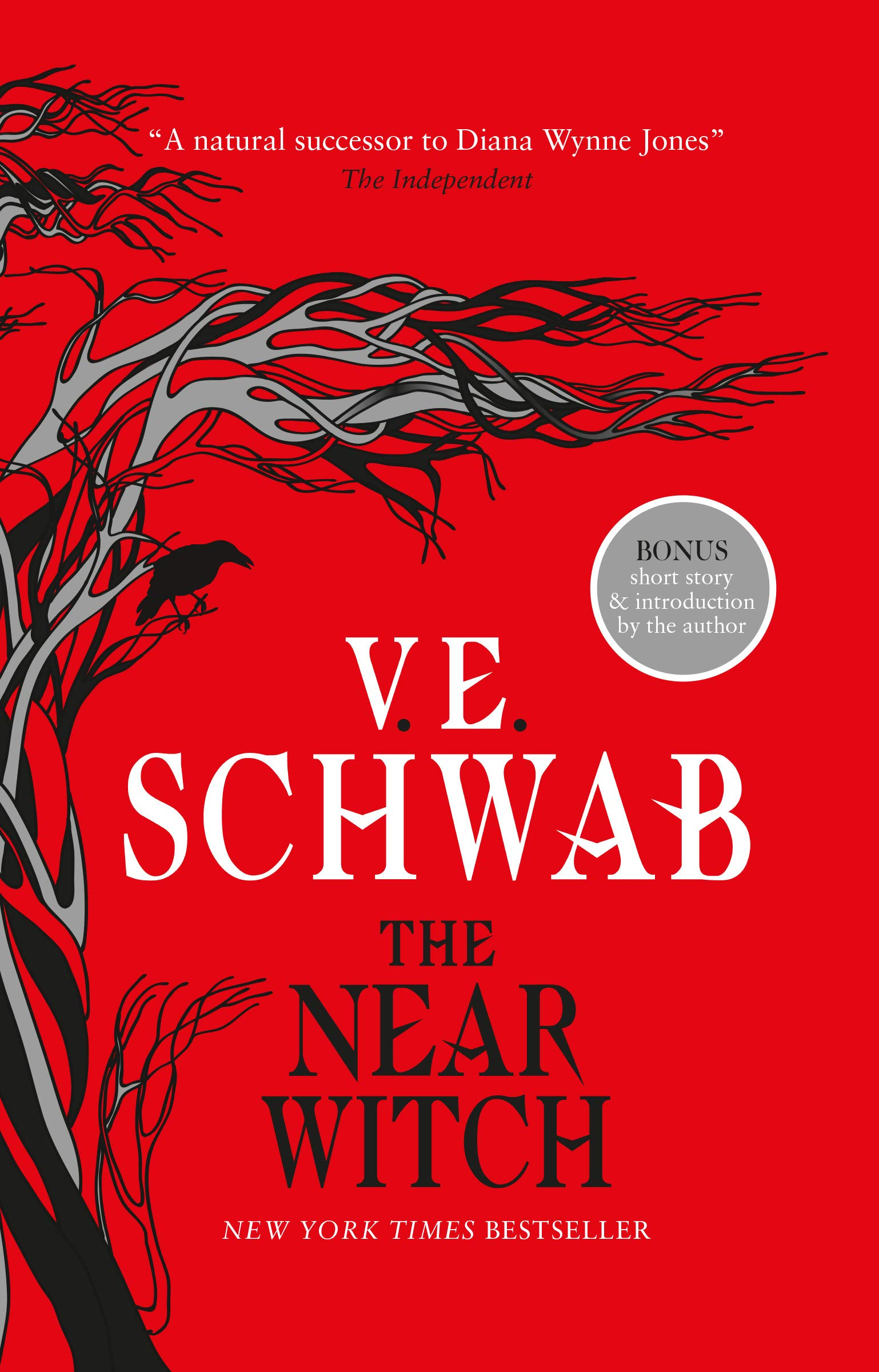 Amazon.com: The Near Witch (9781789091144): V. E. Schwab: Books
