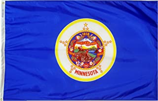 product image for Annin Flagmakers Model 142760 Minnesota State Flag 3x5 ft. Nylon SolarGuard Nyl-Glo 100% Made in USA to Official State Design Specifications.