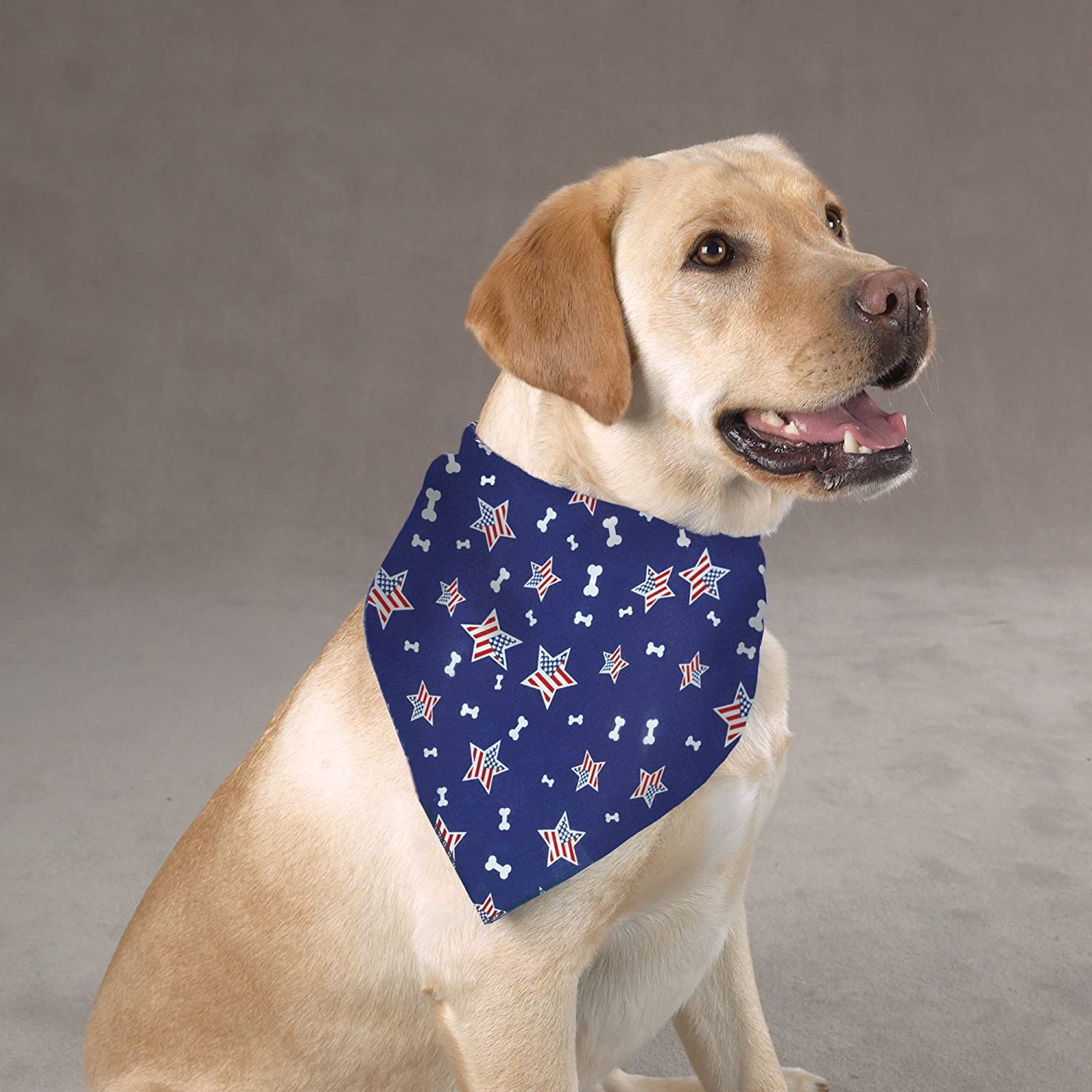 Aria Bone in The USA Bandanas for Dogs