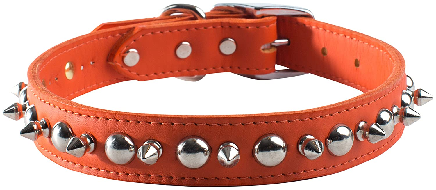 orange 1 by 22\ orange 1 by 22\ OmniPet 6081-OR22 Signature Leather Pet Collar with Spike and Stud Ornaments, orange, 1 by 22