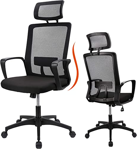 Ergousit Home Office Chair Ergonomic Desk Chair Mesh Computer Chair