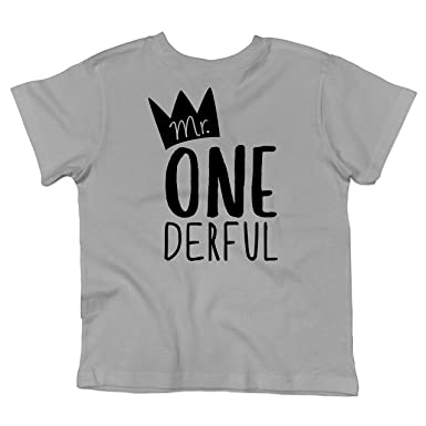 Boys 1st Birthday Outfit Mr One Derful Tee Shirt For Short