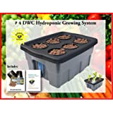 Hydroponic Growing System DWC Grow Box #4-6 H2OtoGro