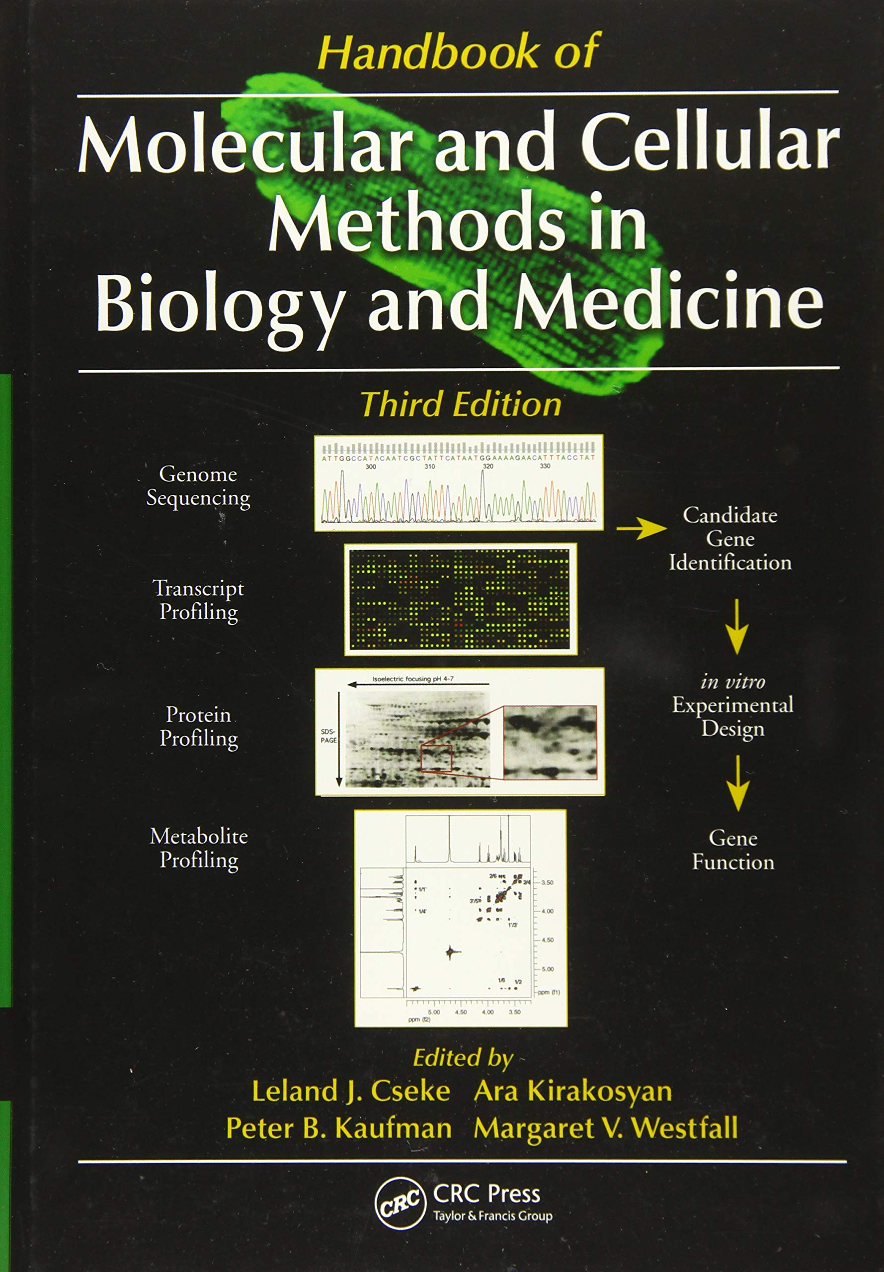 Handbook of Molecular and Cellular Methods in Biology and ...