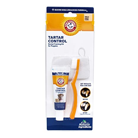 Amazon.com: Brazo y martillo Tartar Control Dental Kit de ...