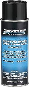 Quicksilver 802878Q1 Phantom Black - Gloss Enamel Spray Paint