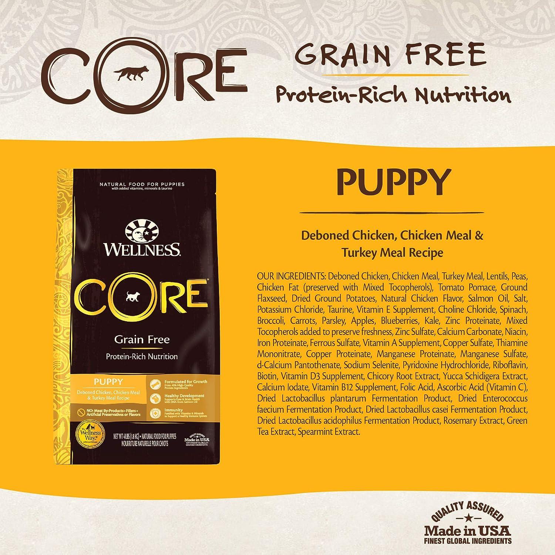 Amazon.com: Comida seca para perro sin granos Wellness Core ...