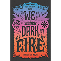 We Set the Dark on Fire book cover