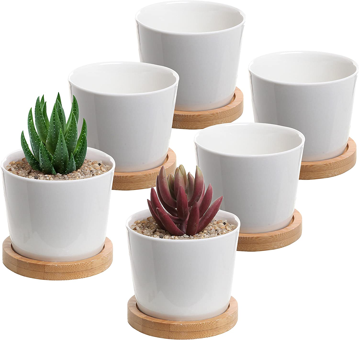MyGift 3-Inch White Ceramic Mini Planter Cups with Bamboo Saucers, Set of 6