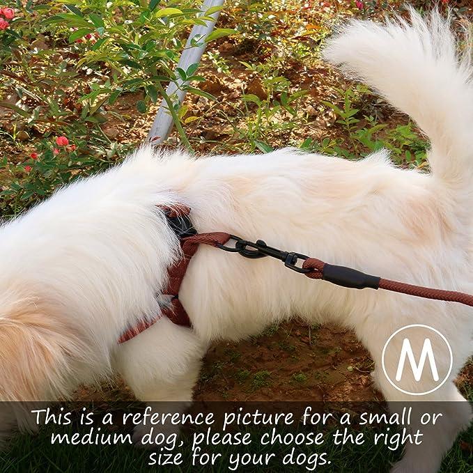 MOSTY Juego de correa acolchada para perro, arnés ajustable ...