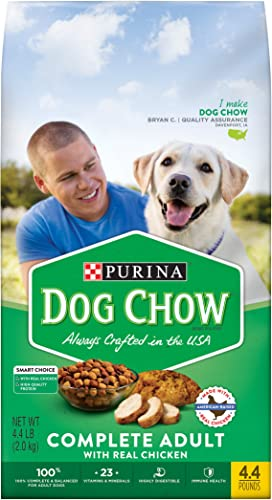Purina Dog Chow Dry Dog Food
