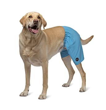 c68c759e93bd7 Kove Mate Dog Swim Trunks Recylced Quick Dry 4 Way Stretch Matching Pet  Swimsuit Small Cyan