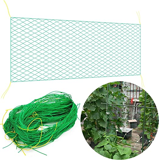 Generies DQSS Malla trepadora de plantas3, 6 x 1, 8 m Malla de jardín Nylon Enrejado Planta Neto Arveja para Plantas trepadoras de Frijoles: Amazon.es: Jardín