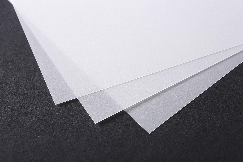 Clairefontaine 96523C Papier Calque rouleau 1,10x10m 110g Jardinage