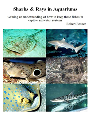 Sharks & Rays in Aquariums (Aquarium Success Book 3)