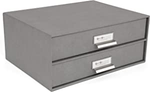 Bigso Birger 2-Drawer Fiberboard Label Frame Document Letter Box, 5.7 x 13 x 9.8 in, Grey