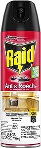 Raid Ant and Roach Killer, Fragrance Free, 17.5 OZ (Pack - 2)
