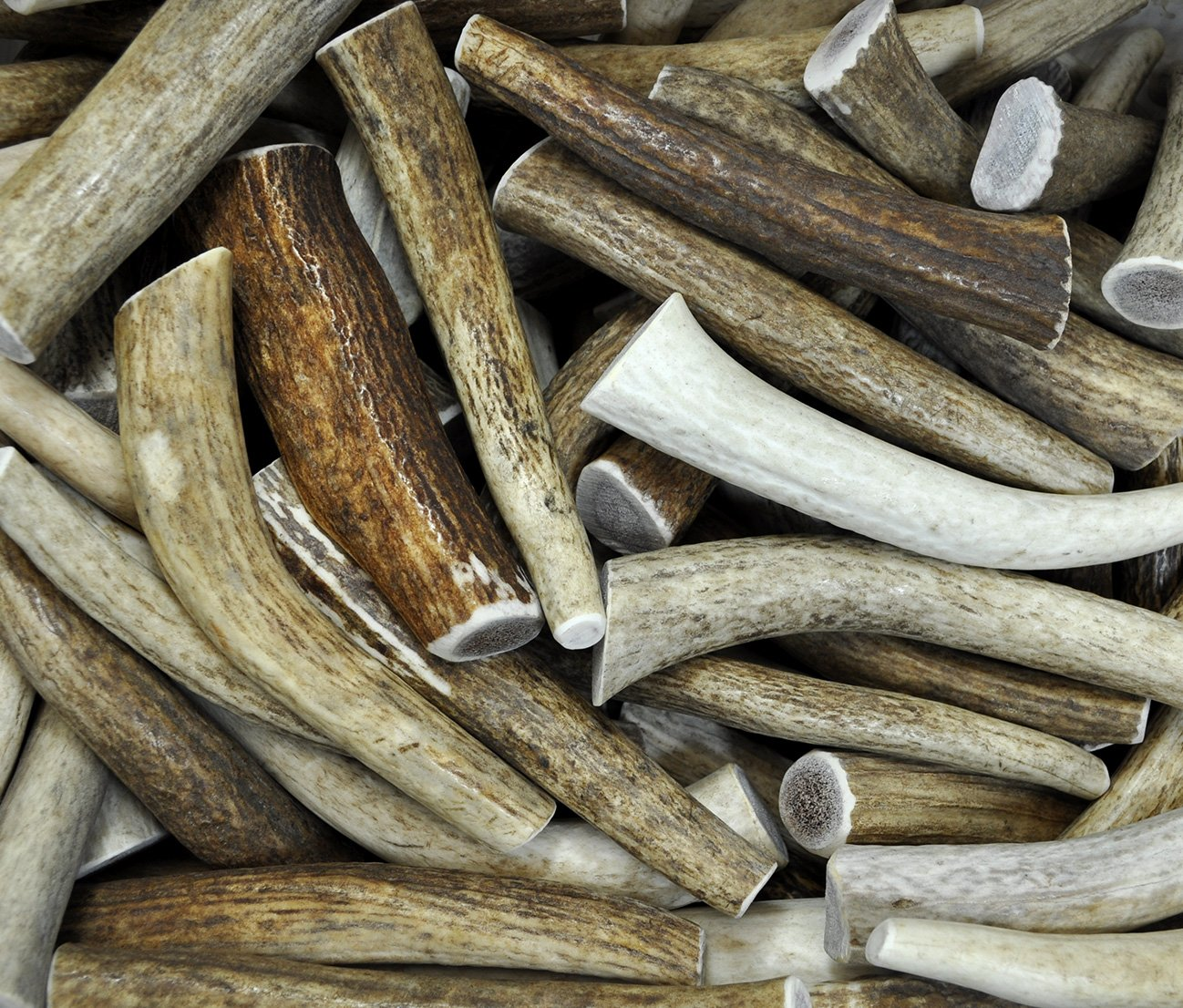 Downtown Pet Supply's, 3 Pound Antler Variety Value Pack, Deer Antler Elk Chews, All Natural Premium Long Lasting Dog Treat Chew Sticks (From the USA!) - Antlers By The Pound