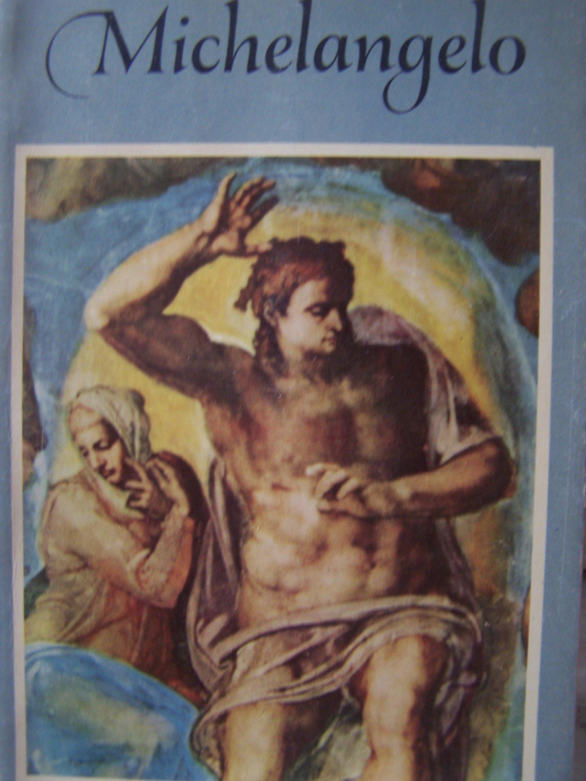 michelangelo tthe pocket library of great art
