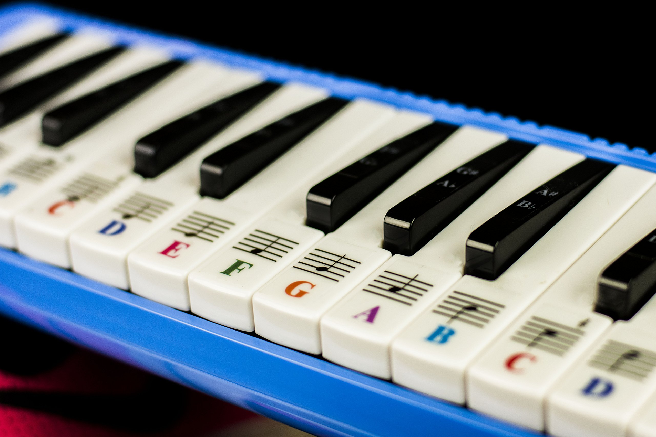 Melodica 32 Keys with Piano Stickers, Hard Cover Carrying Case, Mouthpiece, and Piano Ebook by QMG (Image #3)