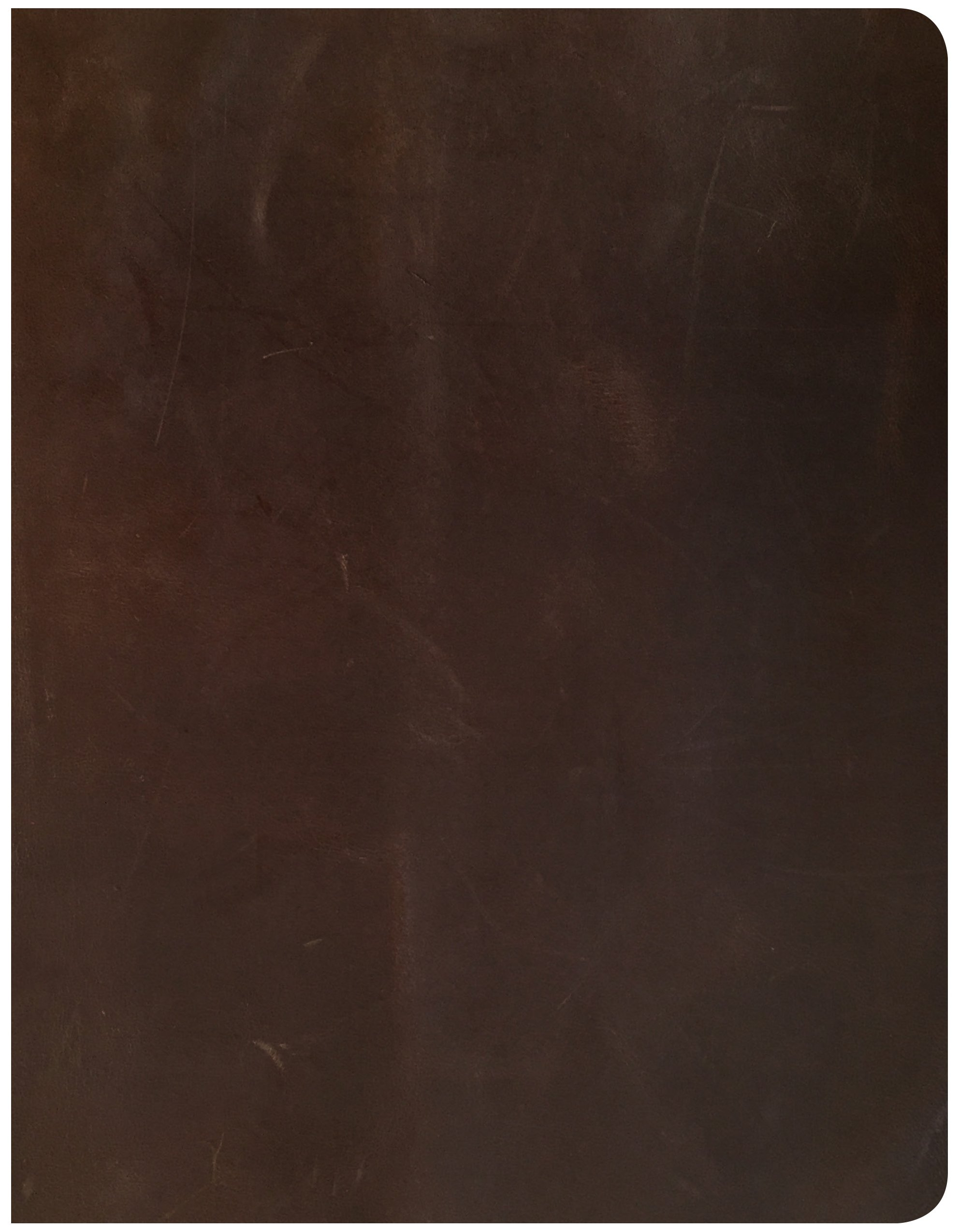 Download CSB Notetaking Bible, Brown Genuine Leather Over Board PDF