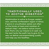 Nature's Way Premium Herbal Marshmallow Root, 960