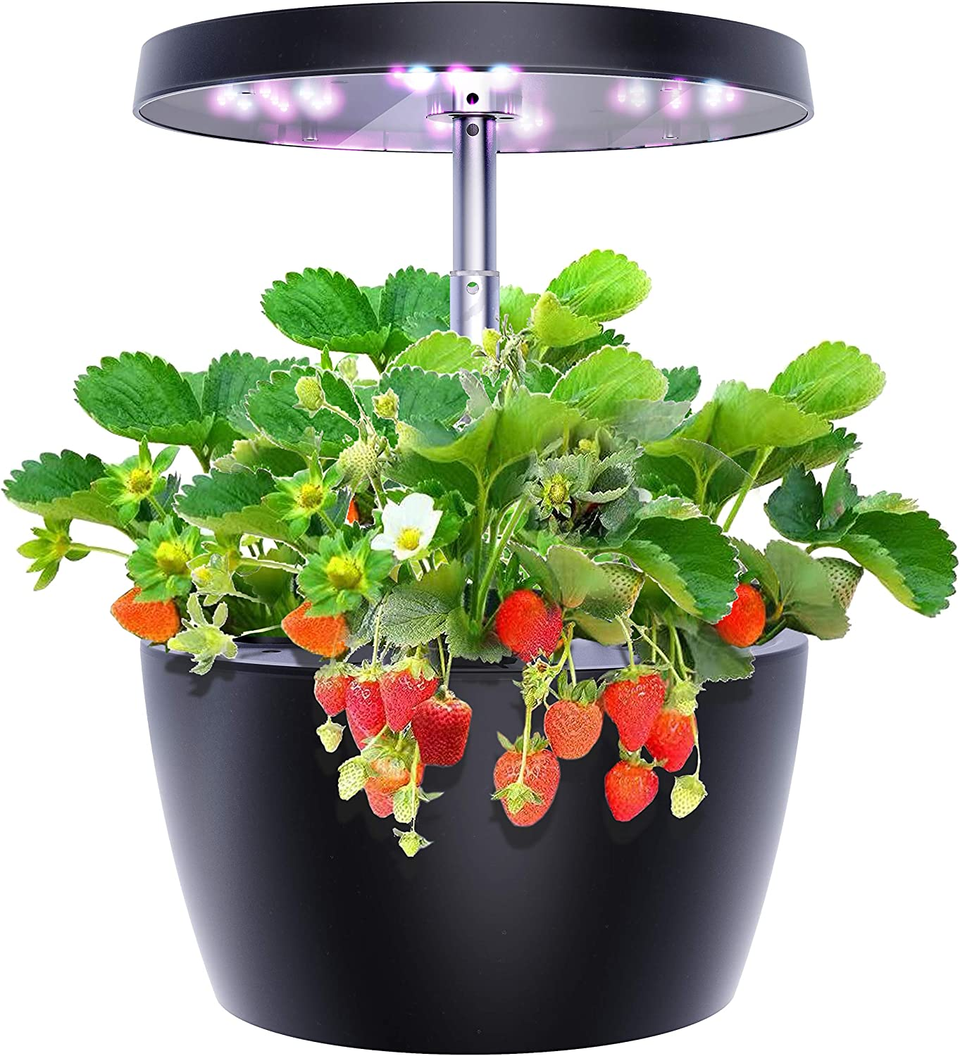 Hydroponics Growing System, Smart Garden with 3 Growth Modes, Indoor Herb Garden Starter Kit Easy to Use, Ideal Gift for Family, Black, 4 Pots
