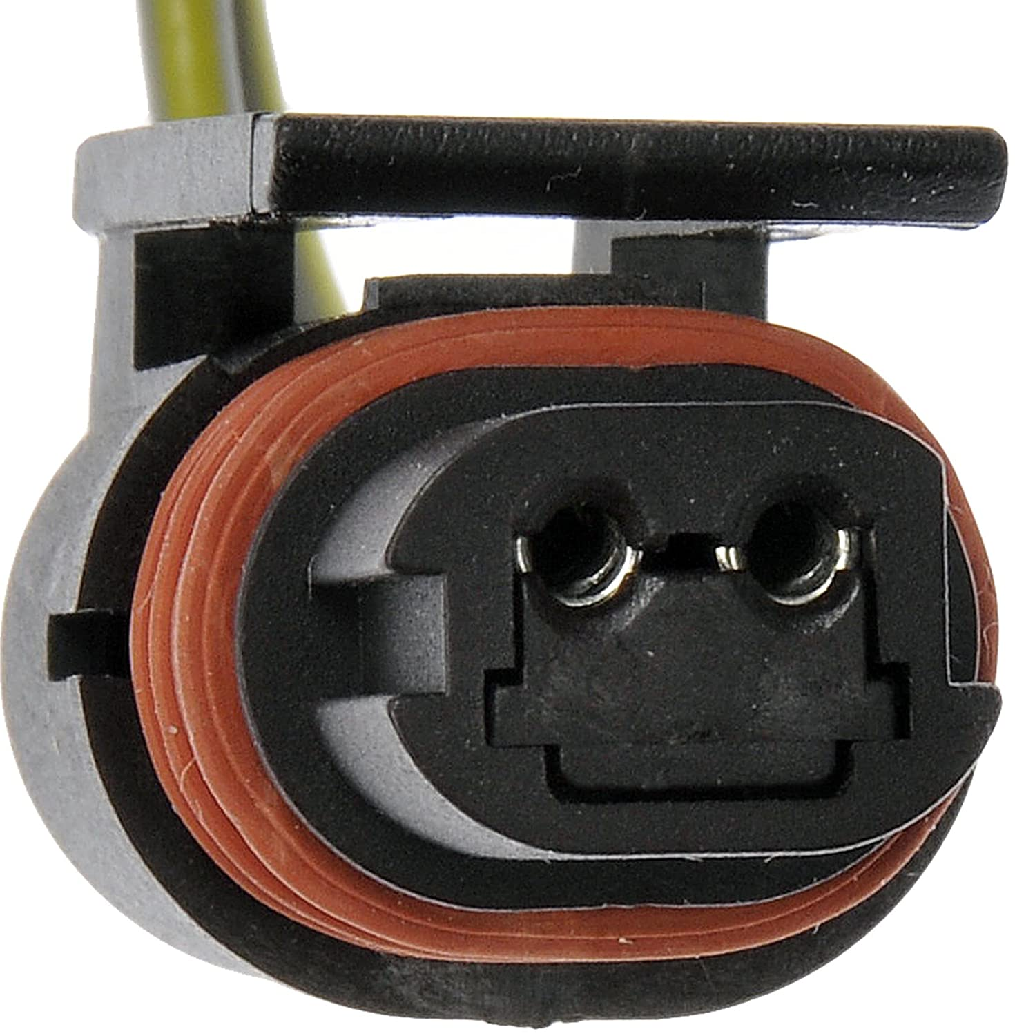 Dorman 645-748 License Plate Lamp Socket and Harness Assembly
