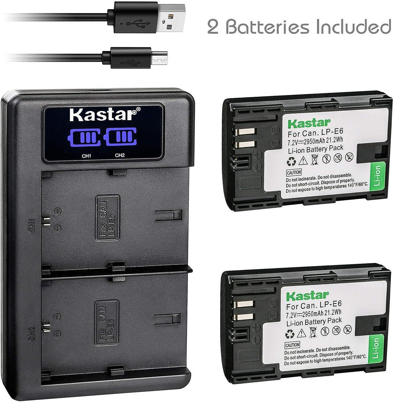 Kastar - Cargador de batería USB LCD Dual para CH-LKD2-LPE6-a LPE6 LP-E6: Amazon.es: Electrónica