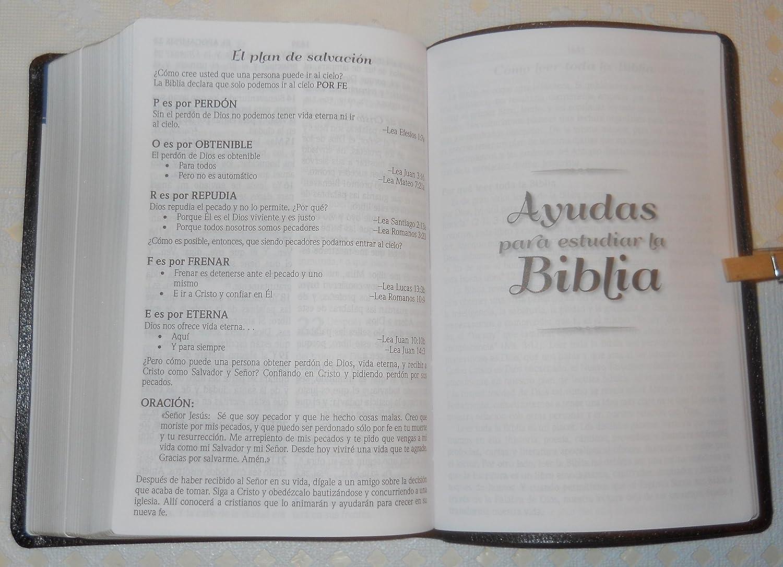 Amazon : Biblia Letra Grande Tamano Manual Con Referencias Reina  Valera 1960 Printed 2012 : Everything Else