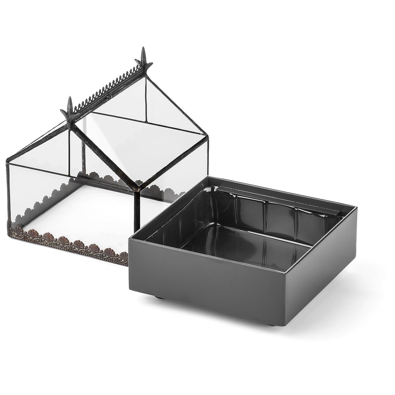 Amazon.com: H Potter - Estuche de cristal para terrario de ...