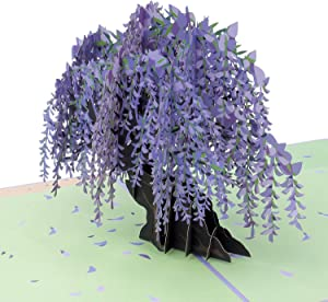 """Paper Love Wisteria Pop Up Card, 3D Popup Greeting Cards, for Birthday, Valentine's Day, Mothers Day, Spring, Fathers Day, Graduation, Wedding, Anniversary, Thank You, Get Well, All Occasion 