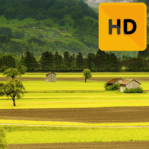 Fields Wallpaper Hd Amazones Appstore Para Android